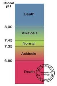 Кислотно-щелочное состояние и интерпретация газового состава крови